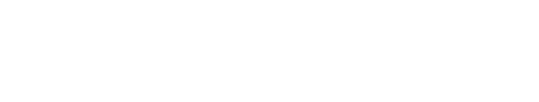 BMS Autobekleding logo